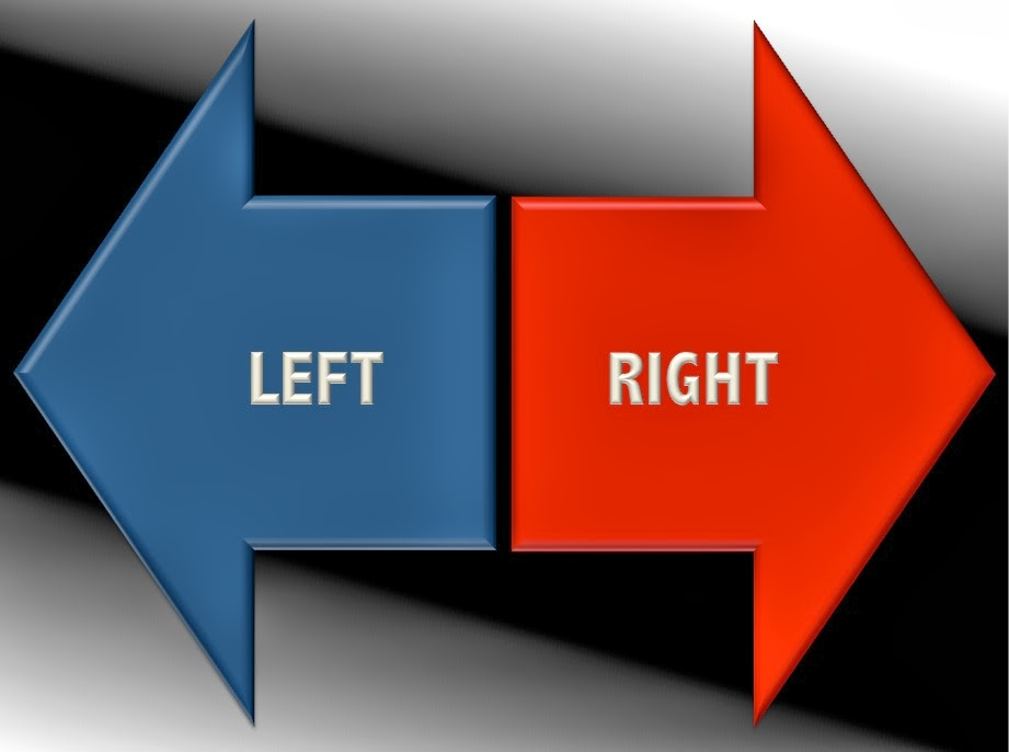 Left wing or Right wing